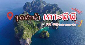 16 จุดดำน้ำลึกและดำน้ำตื้นที่เกาะพีพี จังหวัดกระบี่ – Phi Phi Scuba Diving Sites